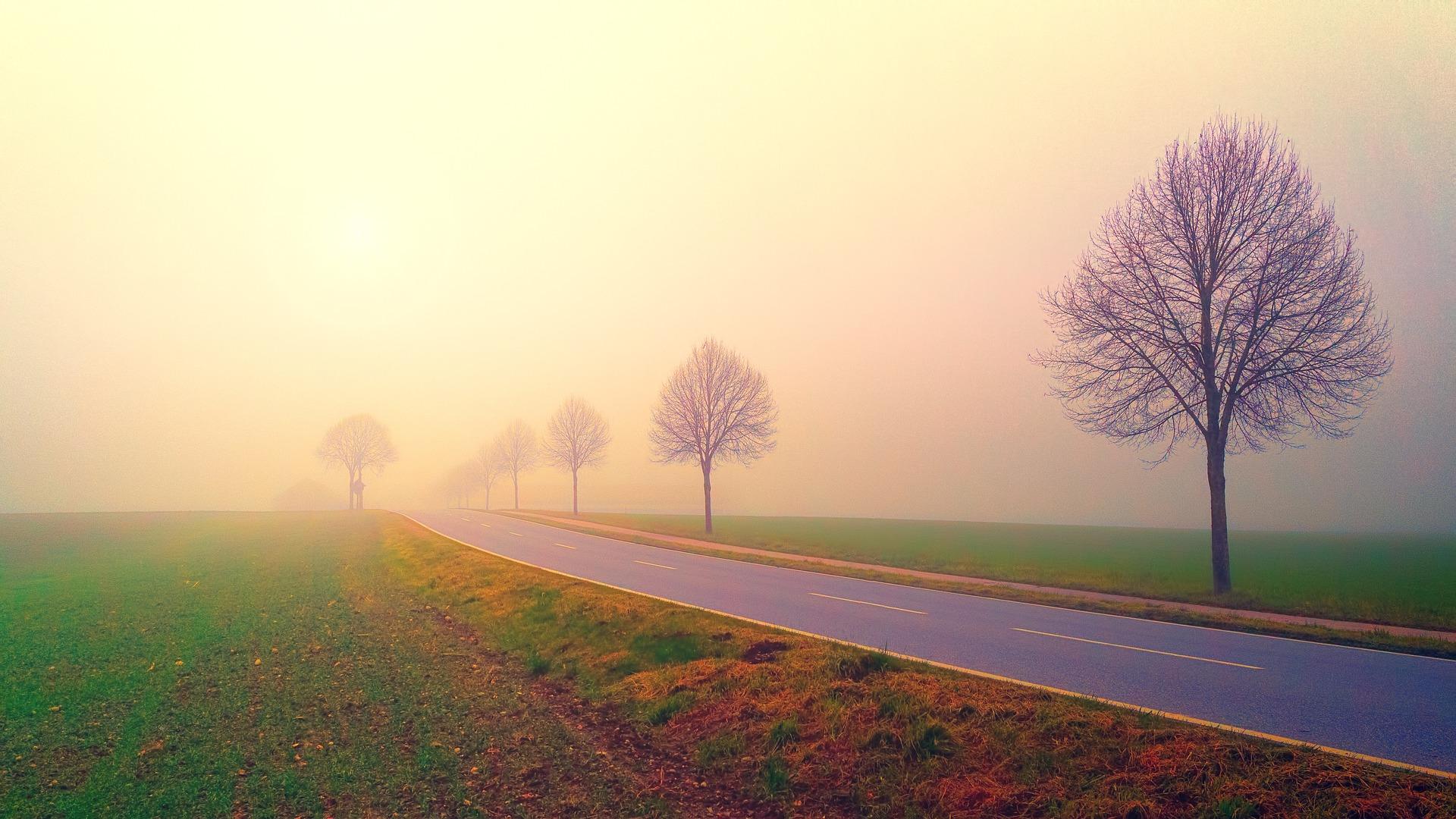 夜明けの道