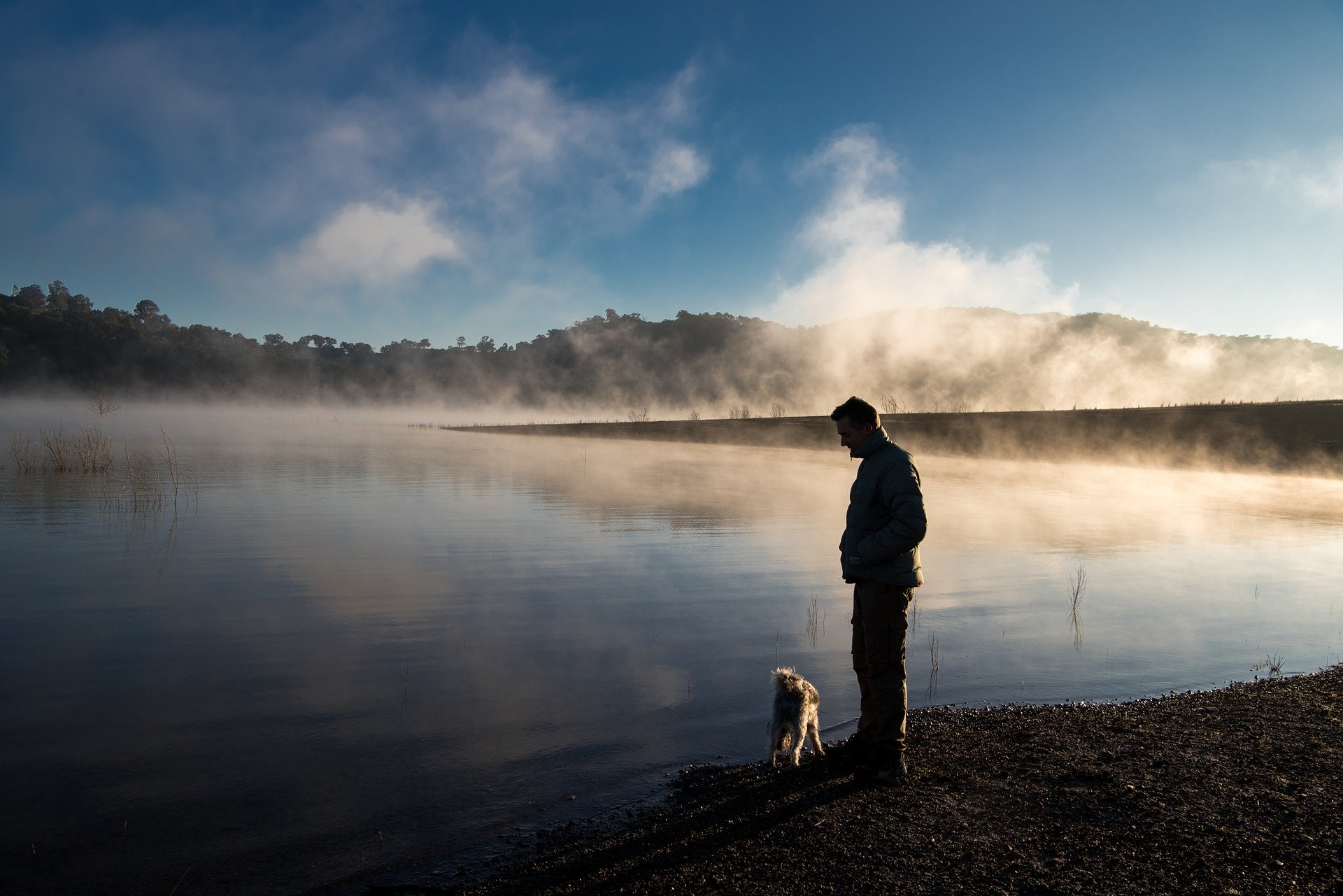 湖畔の男性と犬