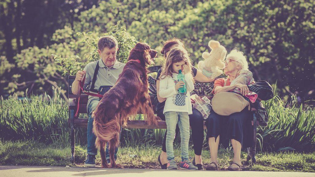 公園のベンチで寛ぐ家族と犬