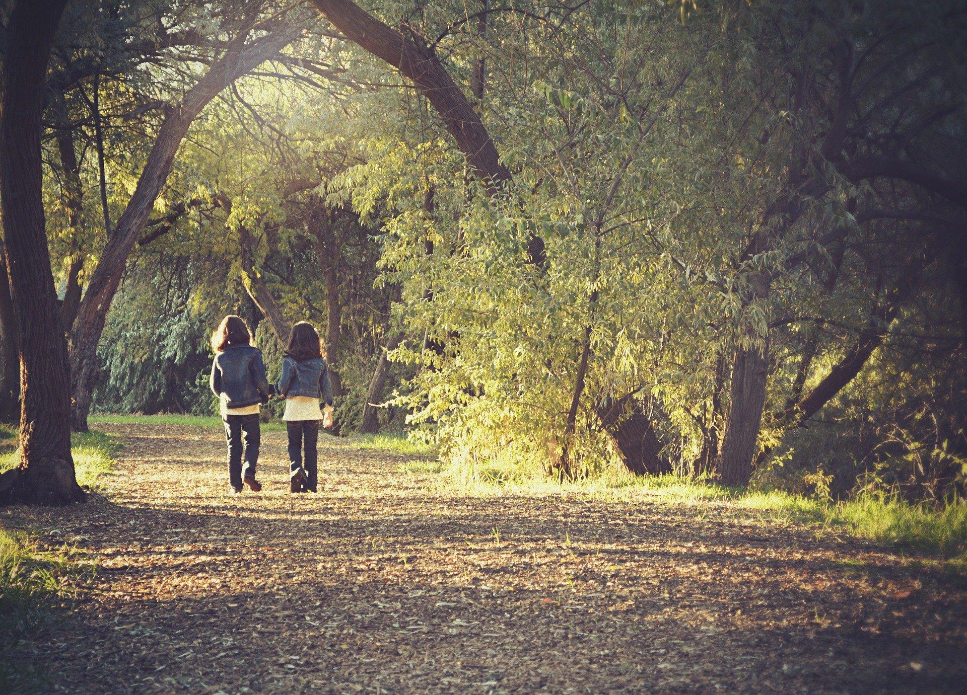 森を歩く子供